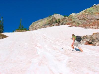 Напротяжении тысячелетий загадка этого арбузного снега ( watermelon snow ) удивляла ученых вс