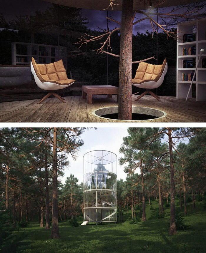 10. Дом, построенный вокруг дерева