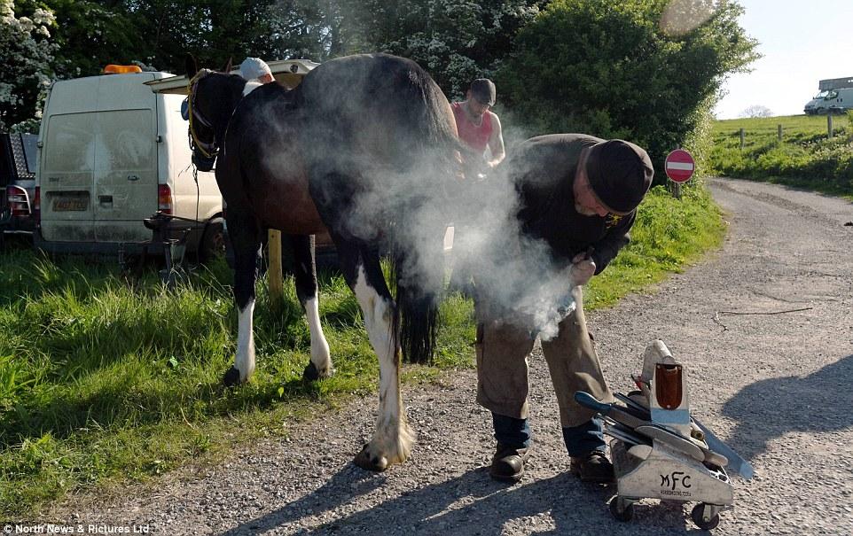 Кузнец подковывает лошадь, для него ярмарка в Эпплби — прибыльное мероприятие.