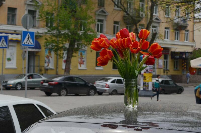 Тюльпанчики, Саратов, Волжская, 05 мая 2015 года