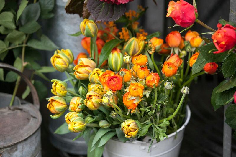 ranunculus for background, beautiful spring flower, vintage floral pattern