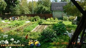 огород днём