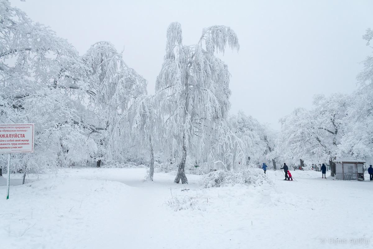 Кумысная поляна зима фото 2