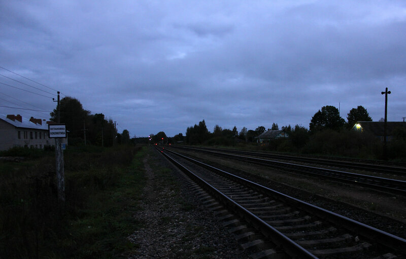 Станция Земцы, вид на Великие луки