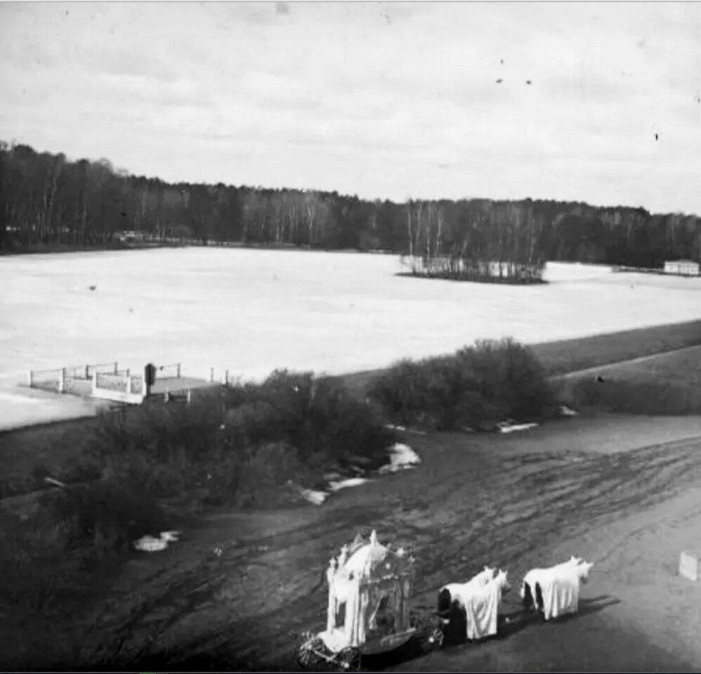 1910. Дворцовый пруд в усадьбе Кусково