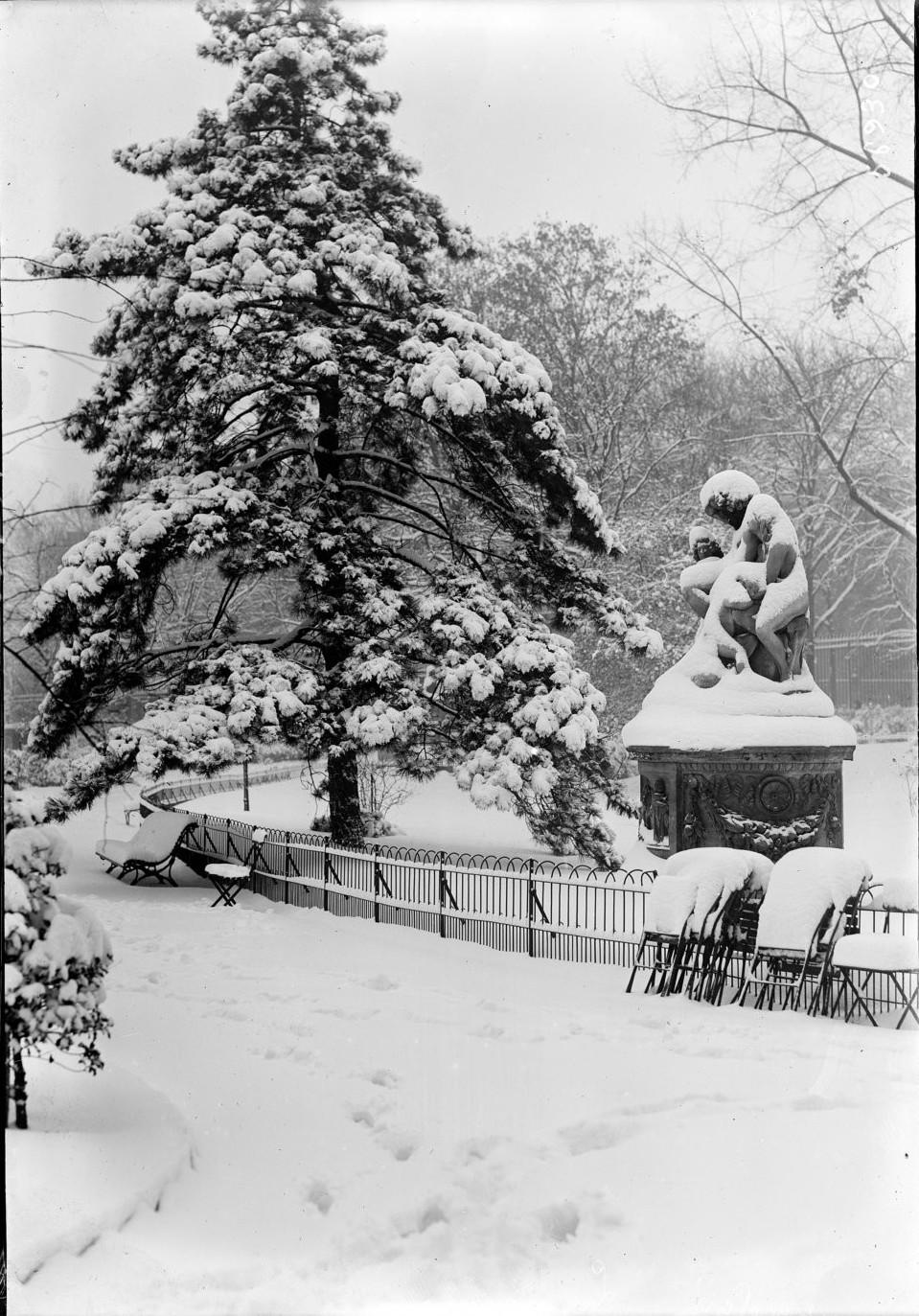 1919. Люксембургский сад зимой