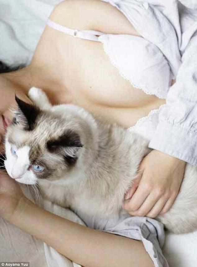 Японец выпустил эротический фотоальбом с терапевтическим эффектом «Котики и груди»