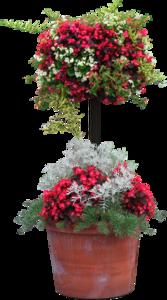 горшок с цветами