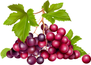 розовый виноград
