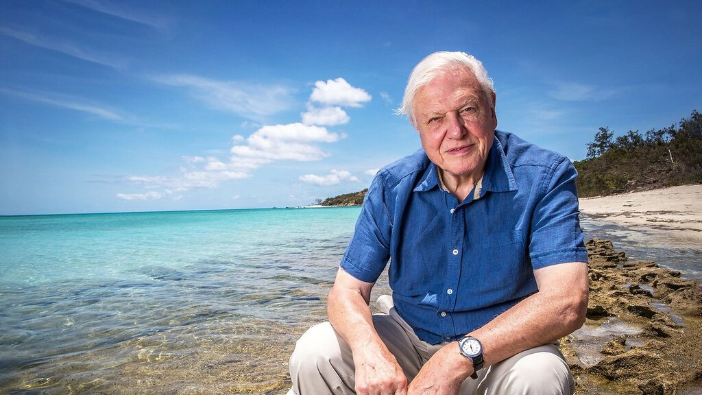 Sir David Attenborough 1926 Дэвид Аттенборо