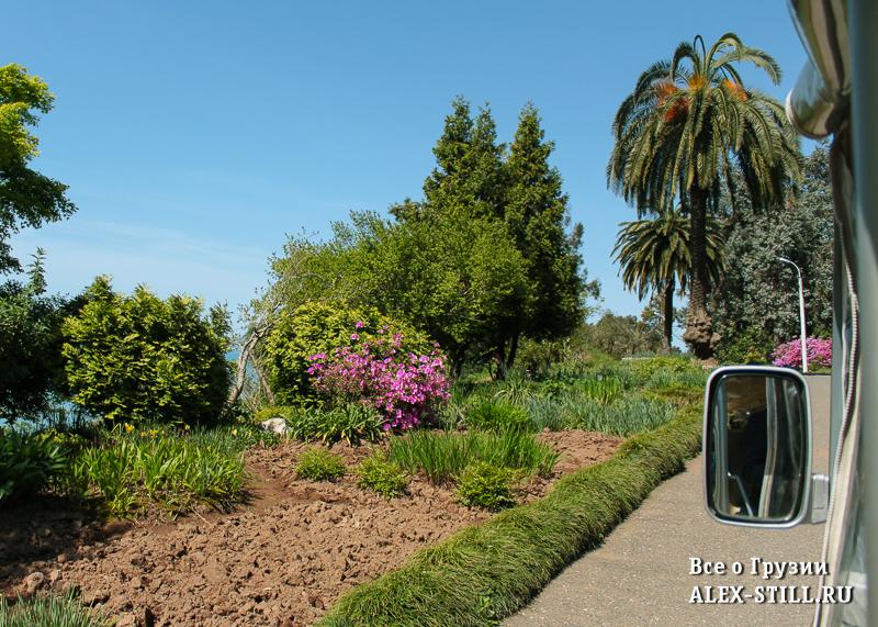 Электромобиль в ботаническом саду Батуми