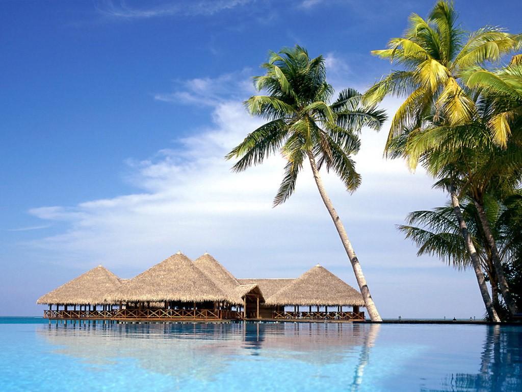 5. Мальдивы Знаменитые острова, острова Вашей мечты, состоят из более чем 1190 коралловых островов.