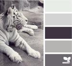 tiger-tones1.png