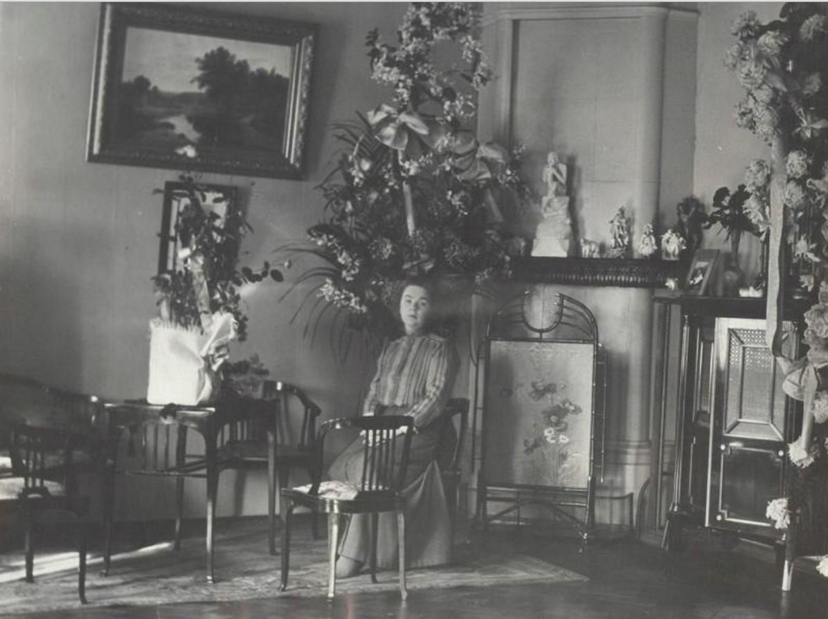 новогодняя елка с камином картинки