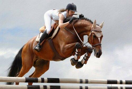 21 и 22 мая в Бельцах пройдет турнир по конному спорту