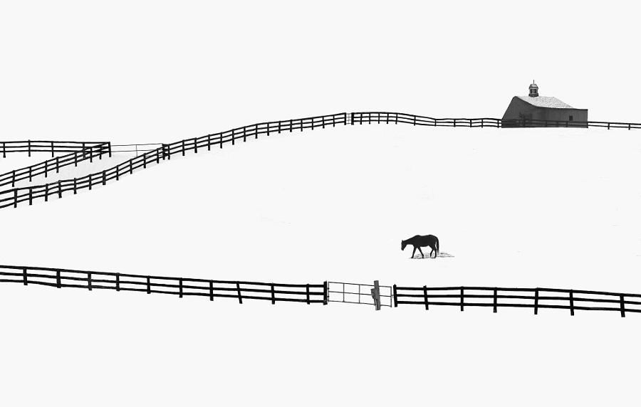 Самые популярные черно-белые фотографии на 500px этого года