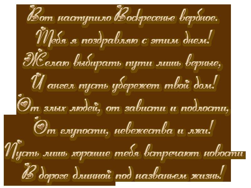 верба.png