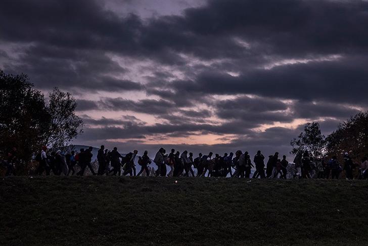 Мигранты в сопровождении словенского спецназа идут вдоль дамбы в регистрационный лагерь возле Добовы