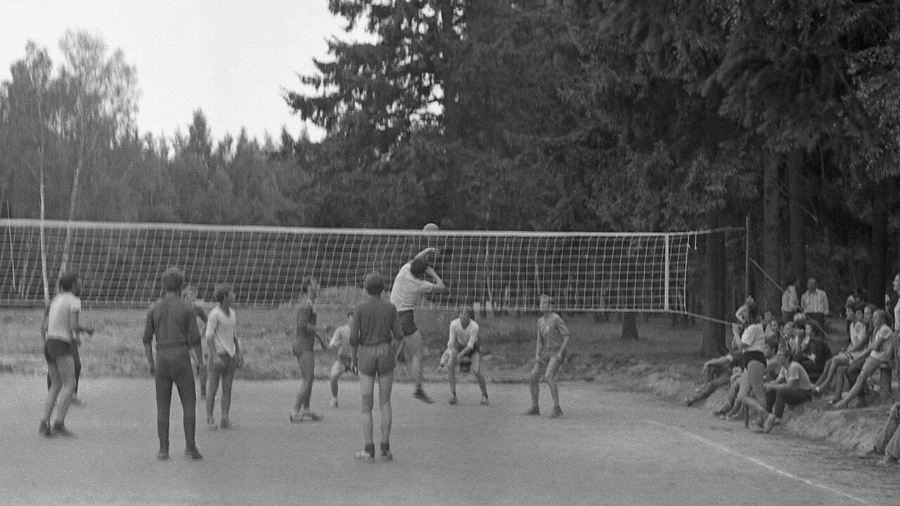 113. Волейбол