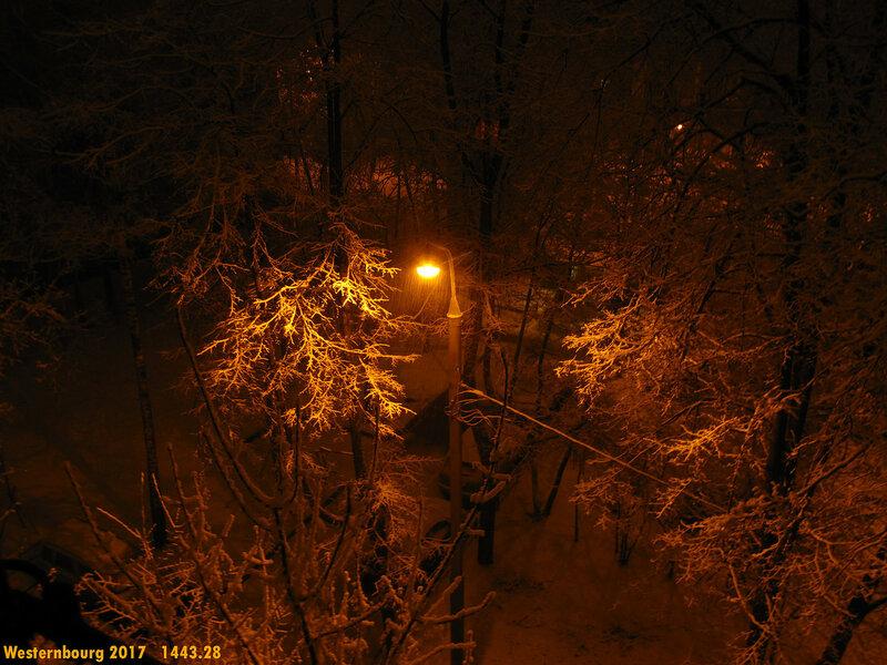 1443.28 Ночной снегопад. 27 мар. 2017 г.