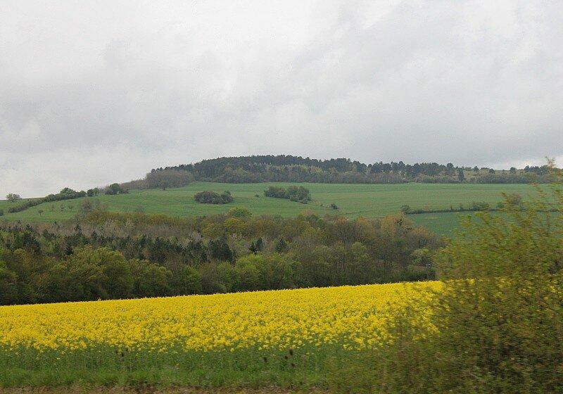 Лотарингия