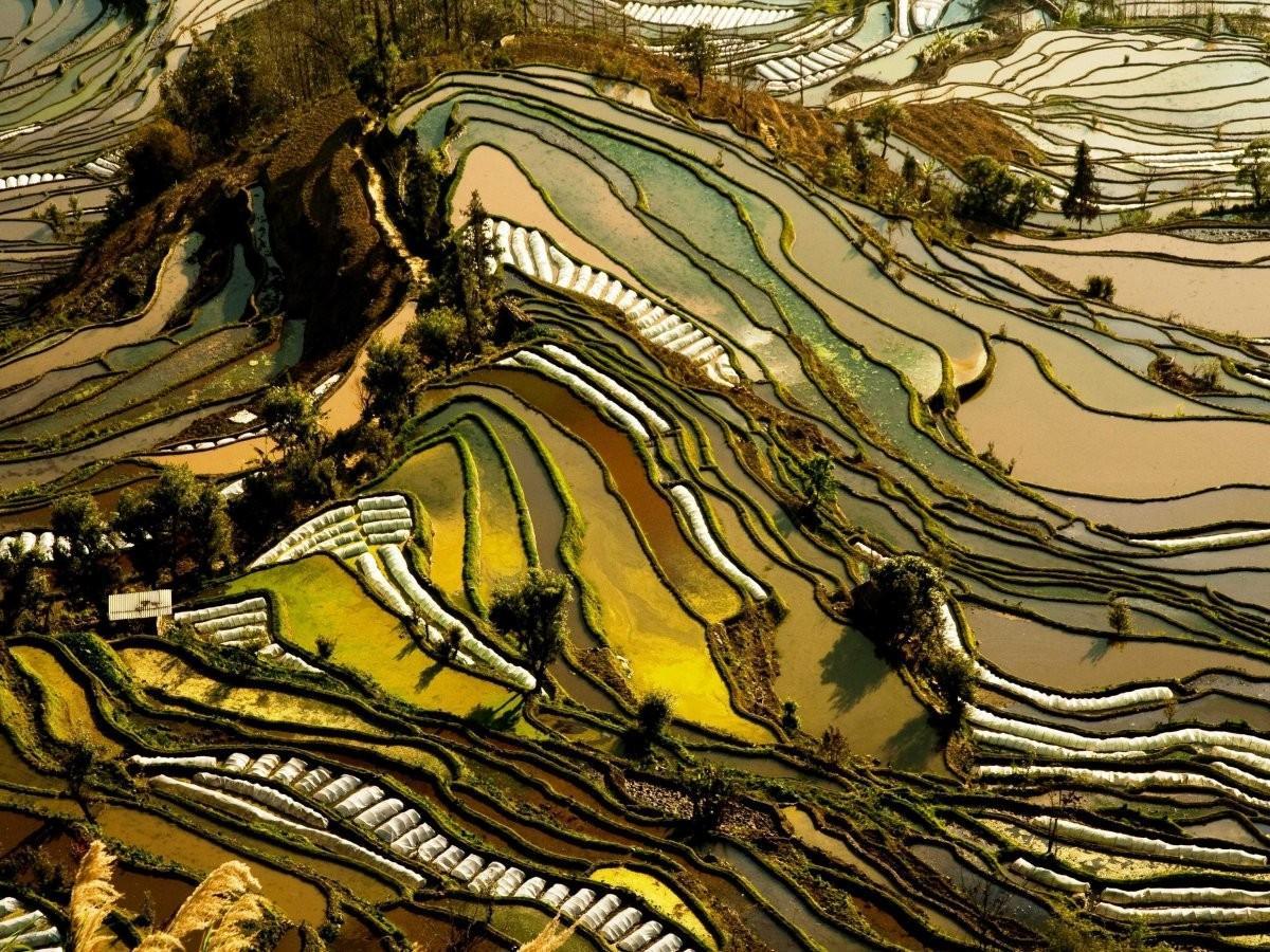 34. Полетайте над рисовыми террасами провинции Юньнань, Китай.