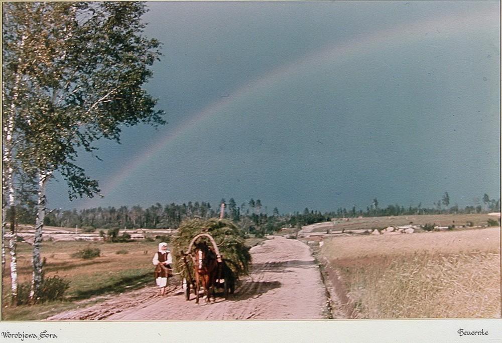 «Воробьева гора» (Worobjewa Gora). Калужская область С 1940 по 1945 год был солдатом вермахта. Служи