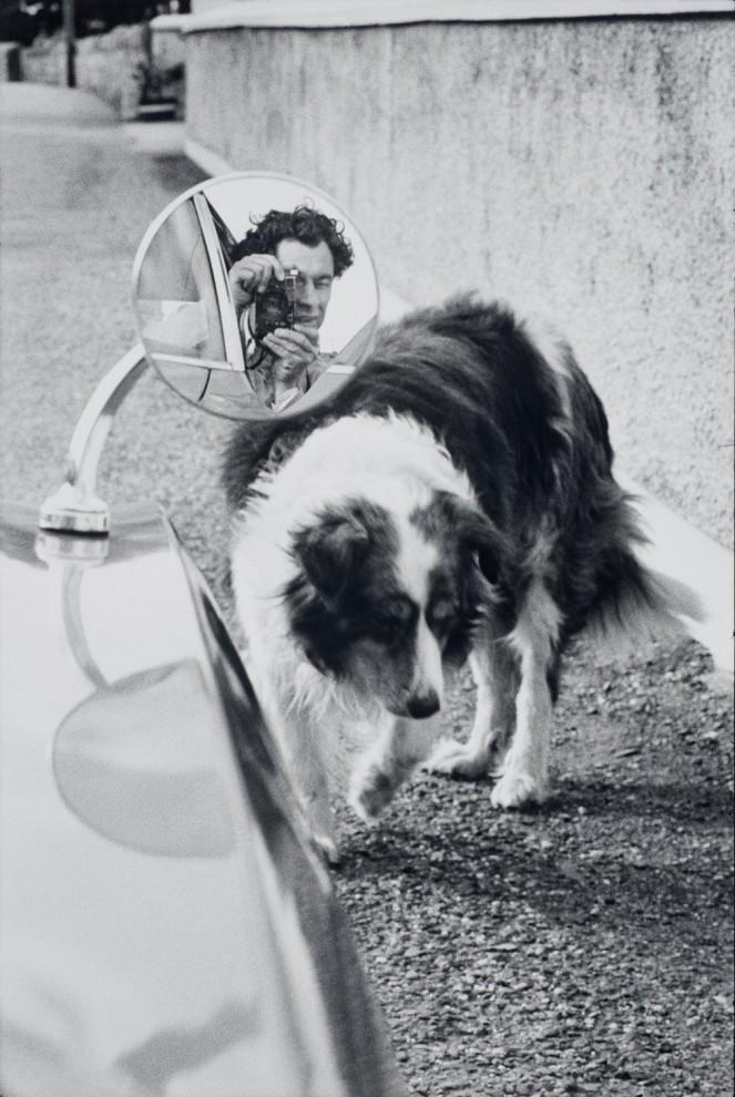 Выставка работ известного американского фотографа Эллиотта Эрвитта