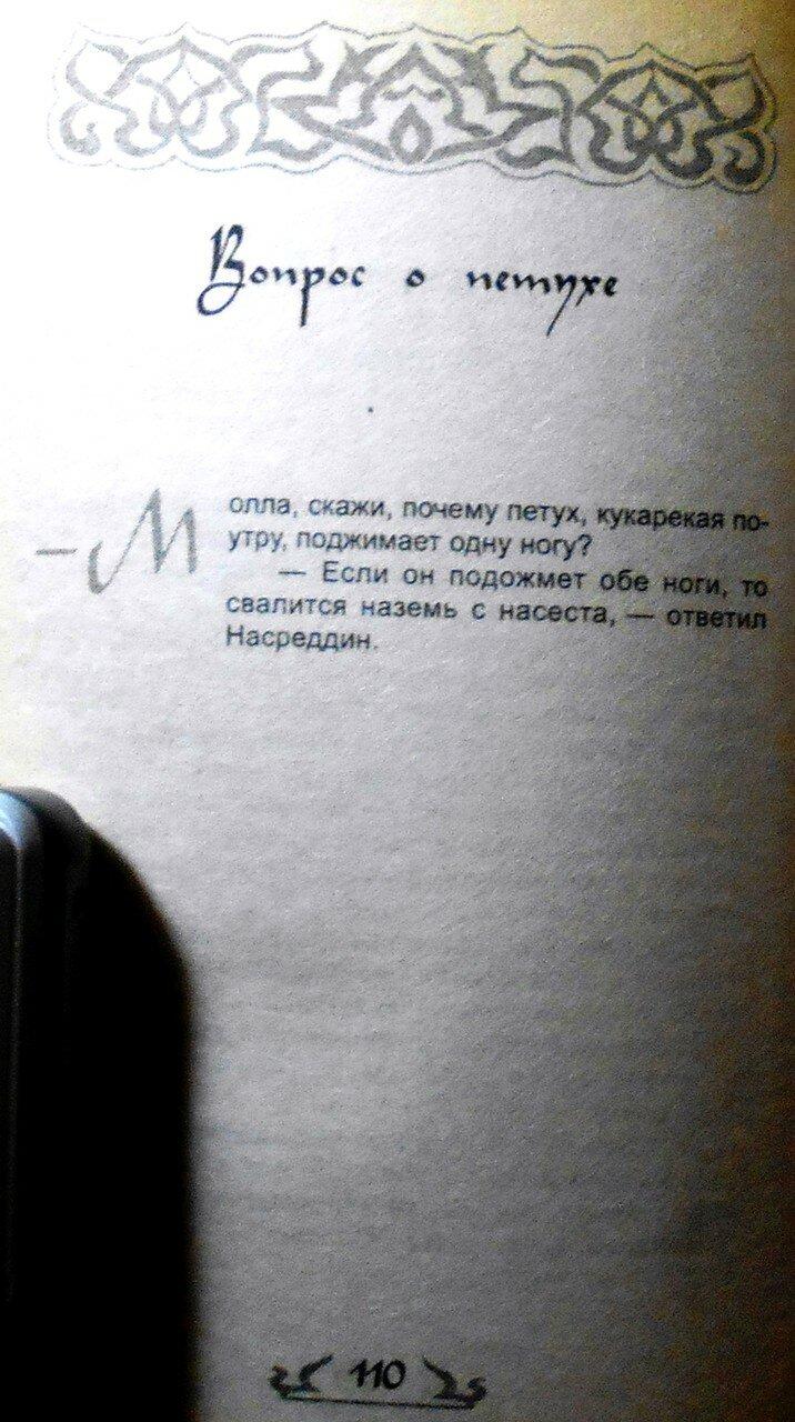 Если ты не ОСЁЛ, или как узнать СУФИЯ (95).JPG