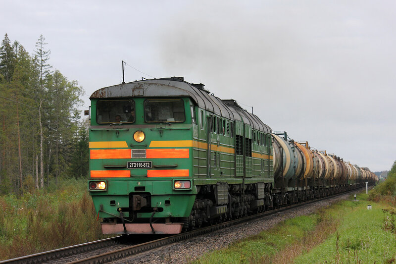 2ТЭ116-872 на перегоне Земцы - Подсосенка