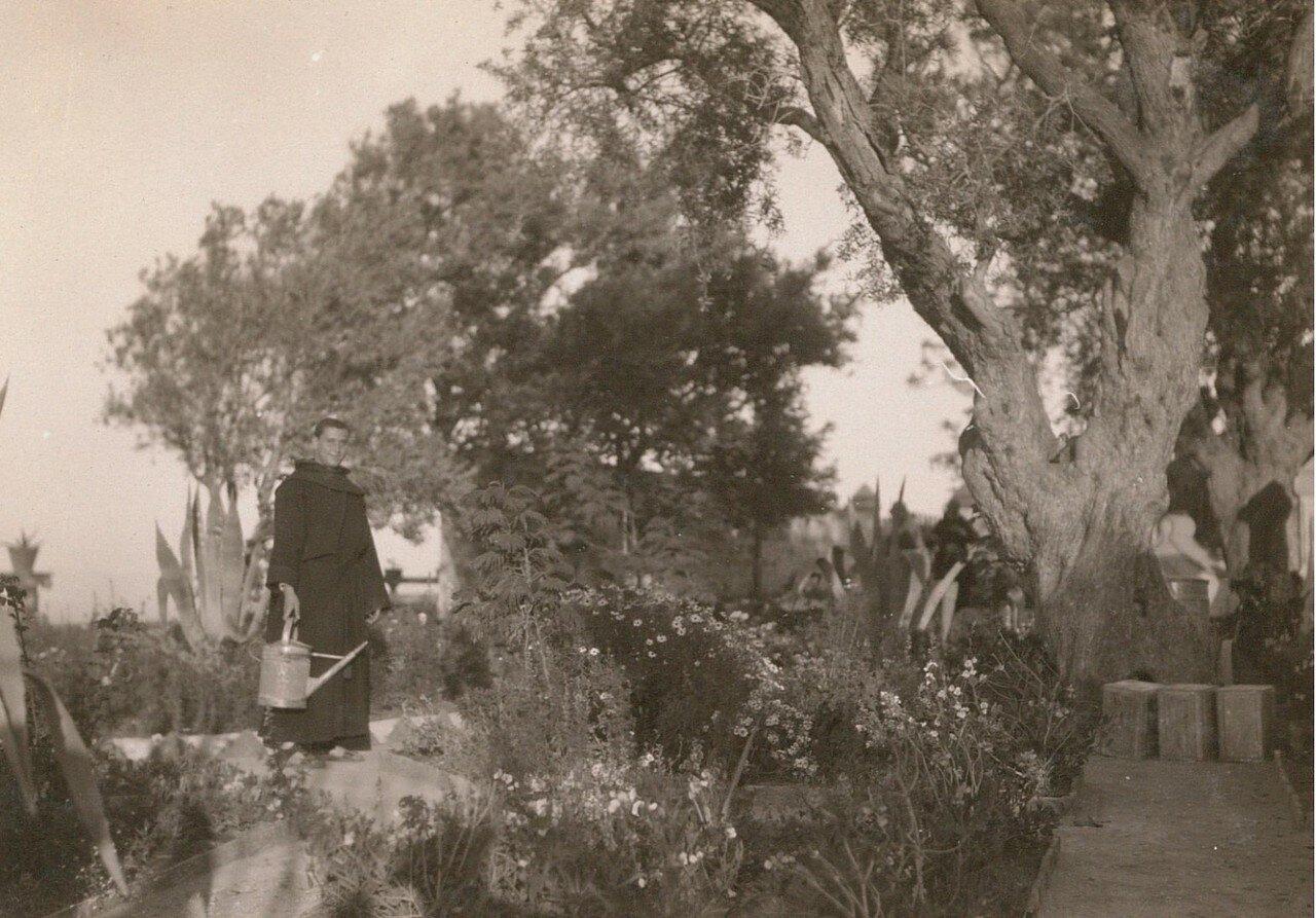 Хайфа. Монастырь кармелитов на горе Кармель. В монастырском саду
