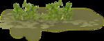 kimla_littlegarden_grass.png