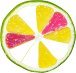 lisete_tropicalpunch_elements (35).png