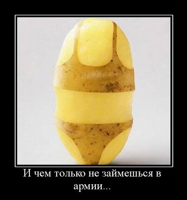 http://img-fotki.yandex.ru/get/6200/130422193.df/0_7584b_e0fc2258_orig