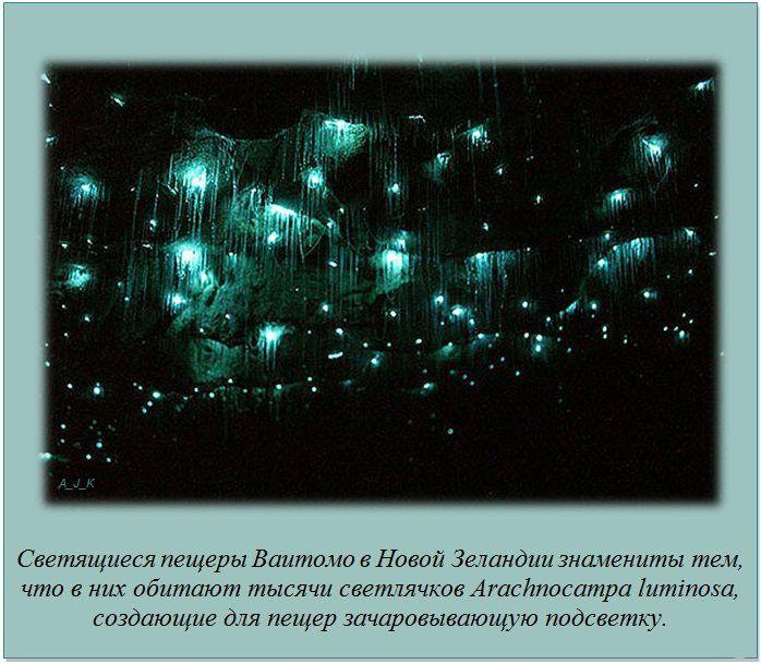 http://img-fotki.yandex.ru/get/6200/130422193.e8/0_76040_78b48b9a_orig