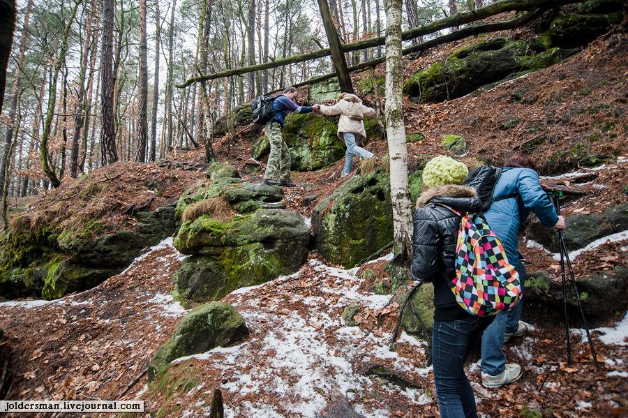 помощь и взаимовыручка в лесу