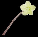natali_design_easter_flower16.png