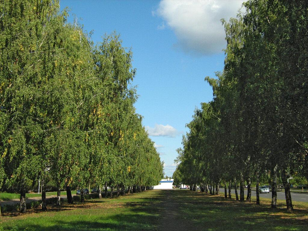 город Набережные Челны, Татарстан, города России