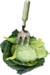 CatherineDesigns_LittleGarden_Cabagge.png