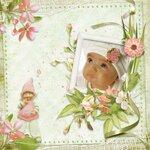 «PeachFacedLovebird» 0_82153_aea7f53_S
