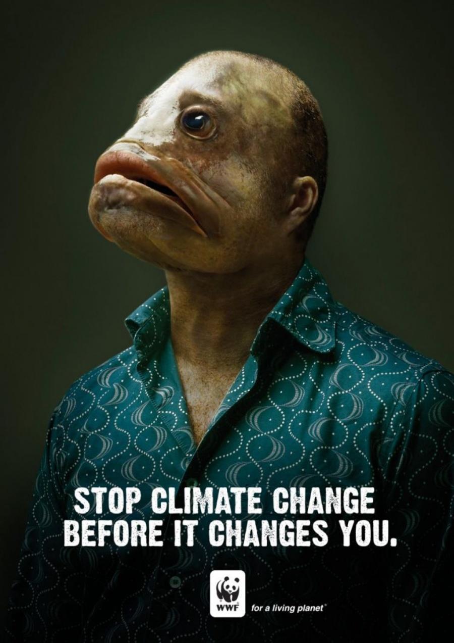 30пронзительных рекламных кампаний взащиту окружающей среды