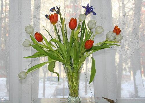 http://img-fotki.yandex.ru/get/6200/28872968.8d/0_715f8_985f3e04_L.jpg