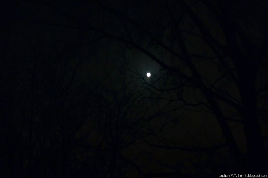 Зимняя луна.