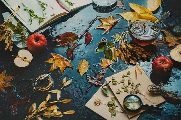 Осеннее настроение. Автор работ: Дина Беленко (Dina Belenko).