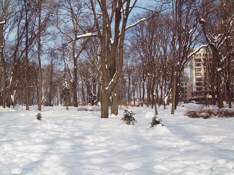 Мариинский парк в феврале