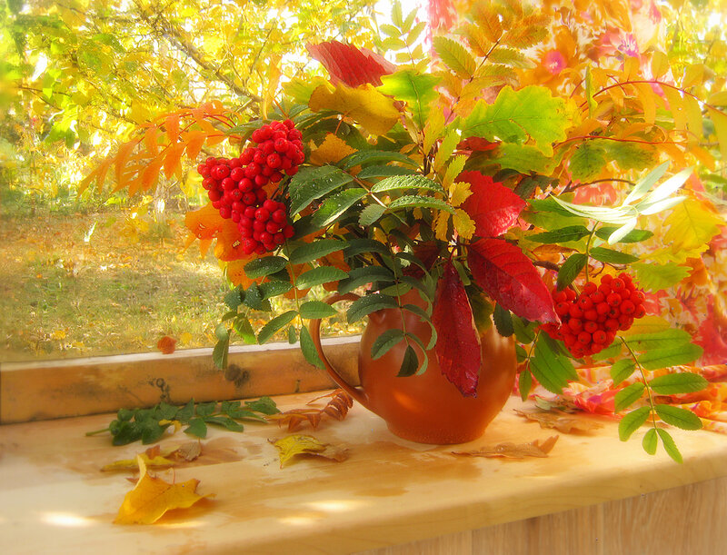 Сияние Осени