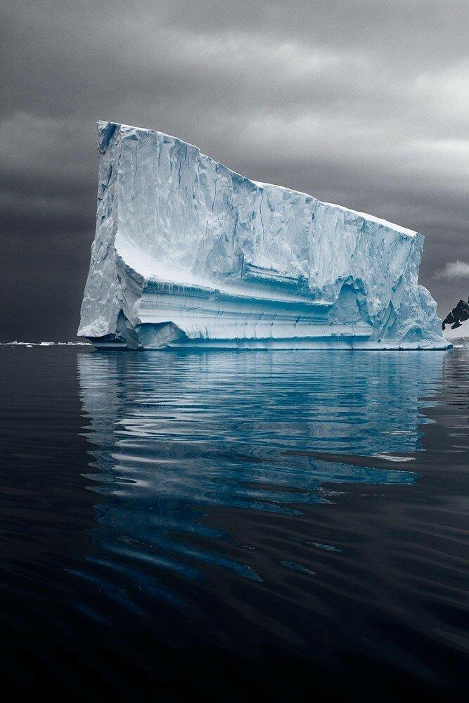 The last iceberg, Camille Seaman280.jpg