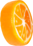 lisete_tropicalpunch_elements (37).png