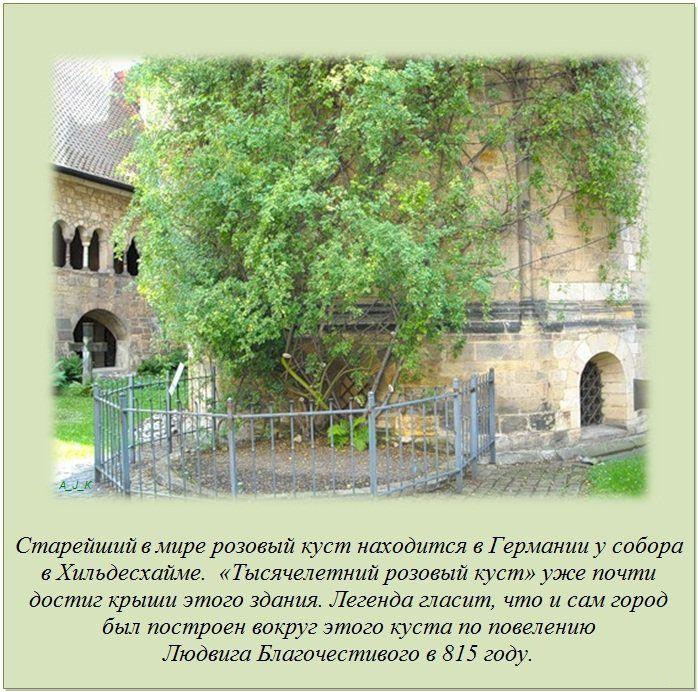 http://img-fotki.yandex.ru/get/6201/130422193.e8/0_76041_a50597ad_orig