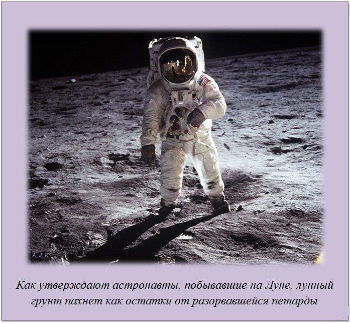 http://img-fotki.yandex.ru/get/6201/130422193.e8/0_7605c_8ba05b2_orig